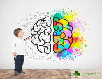 Как да развием мозъка си само за 30 дни – топ 8 съвета