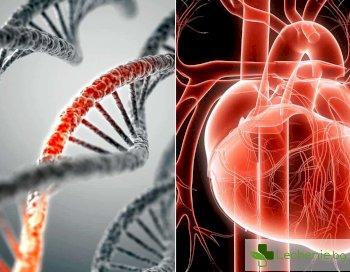 Генетичните тестове предсказват точно дали има риск от инфаркт