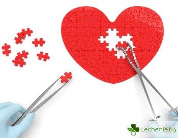 Възстановяване на сърцето след инфаркт - най-новите методи