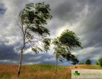 От висока влажност и вятър - усилване на хроничните болки