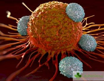 Най-агресивният рак на гърдата - тройно негативният, се лекува по нов начин