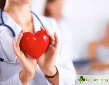 Как сърцето може да се подмлади от чревната флора
