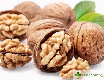 Орехи забавят отслабването на умствената острота