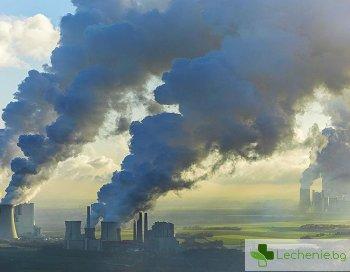 Мръсният въздух предизвиква характерни изменения и в мозъка