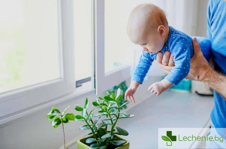 Бебето на 4 месеца - какво трябва да умее да прави на тази възраст