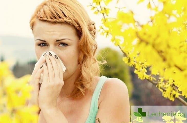 Как да се справим с алергиите през лятото?