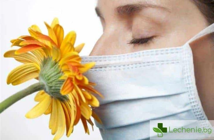 6 причини за поява на алергии