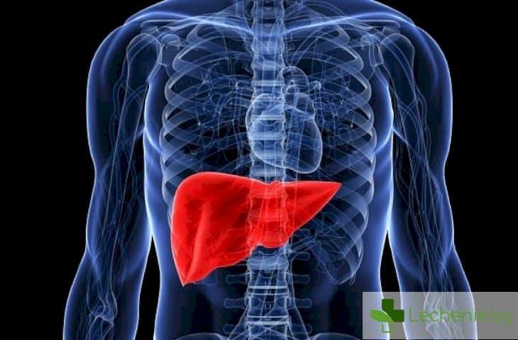 Как да защитите черния си дроб?