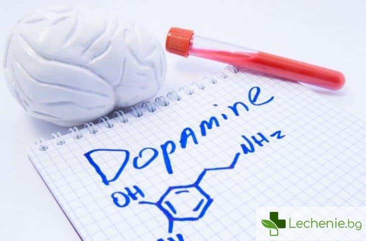 Допаминова диета - нужно ли е да забравим за всички удоволствия