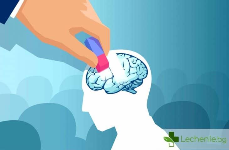 Свободно говорене на два езика може да ни спаси от деменция