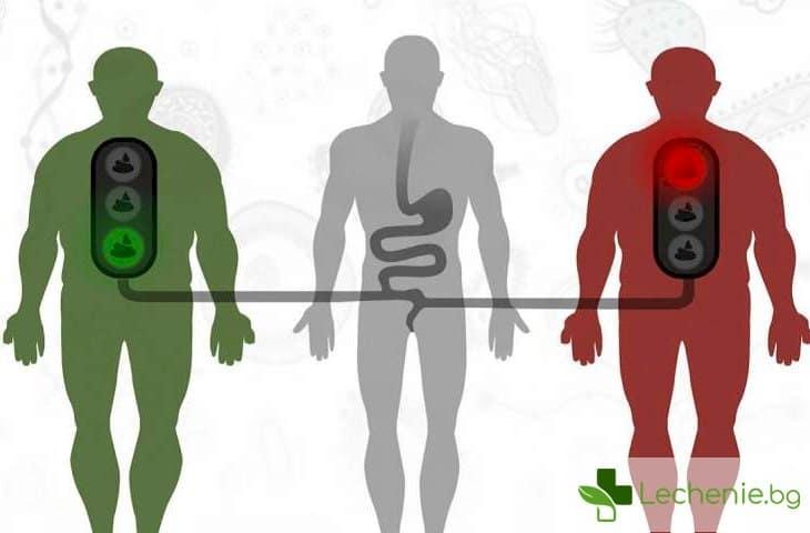 С фекалии от здрав човек лекуват раздразнено дебело черво