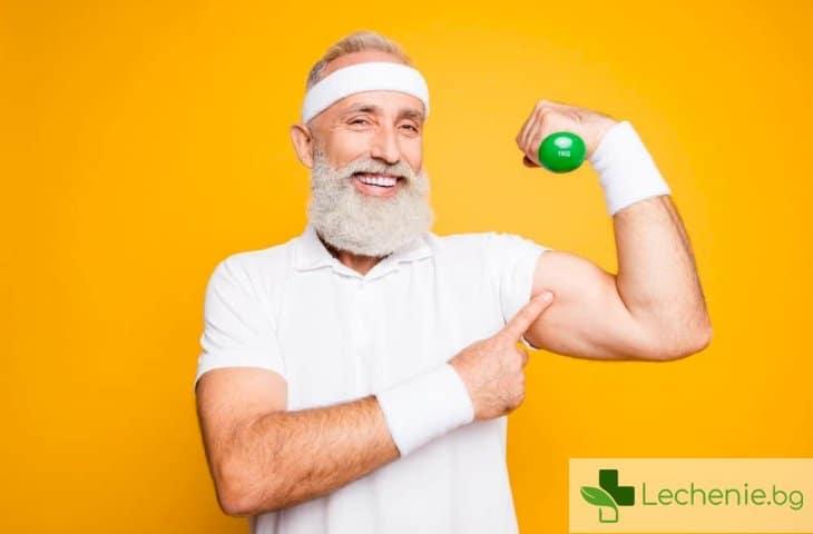 Протеин може да замени физическата активност и тренировките