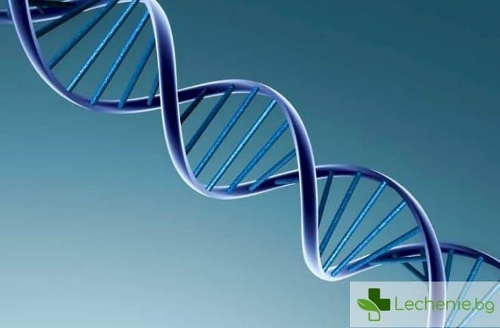 Екип от китайски учени промени генома на човешкия ембрион