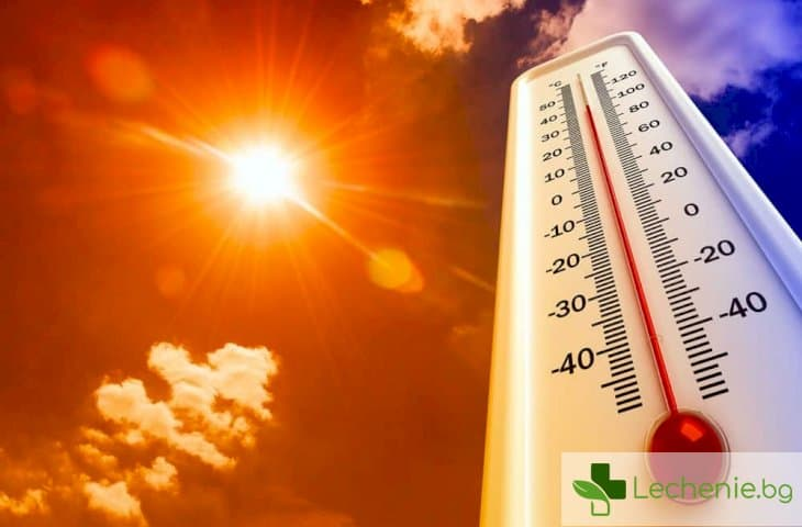 Пълните понасят горещото време по-лесно от кльощавите