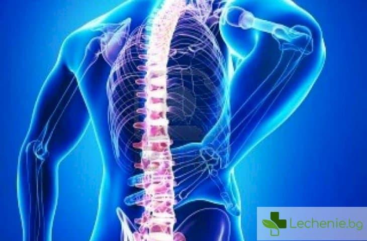 Гръбначни проблеми и техните симптоми