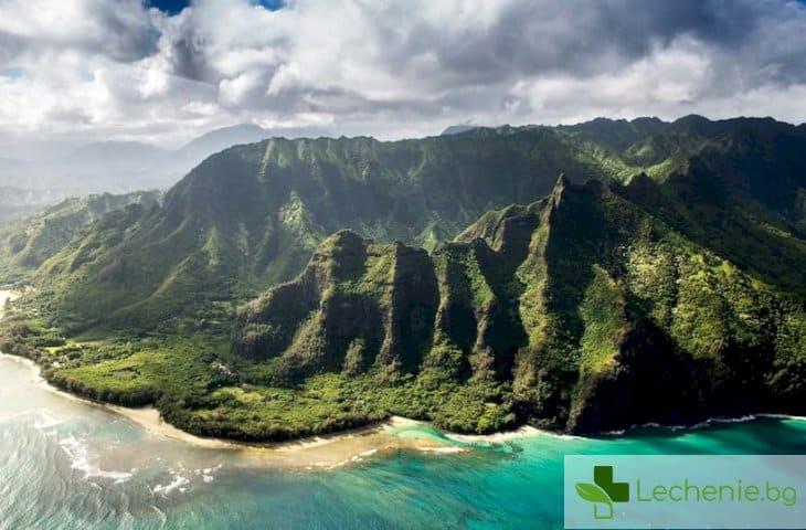 ᐉ Хавайски танц смъква трайно високото кръвно - Lechenie.bg