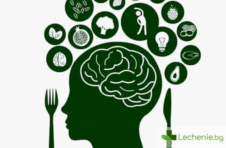 Кои храни повишават мозъчната активност