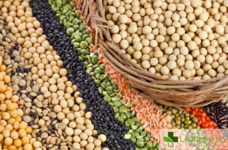 Растително - какво да ядем през Великия пост с белтъчини