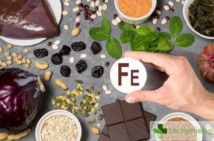 Топ 15 храни с най-високо съдържание на желязо