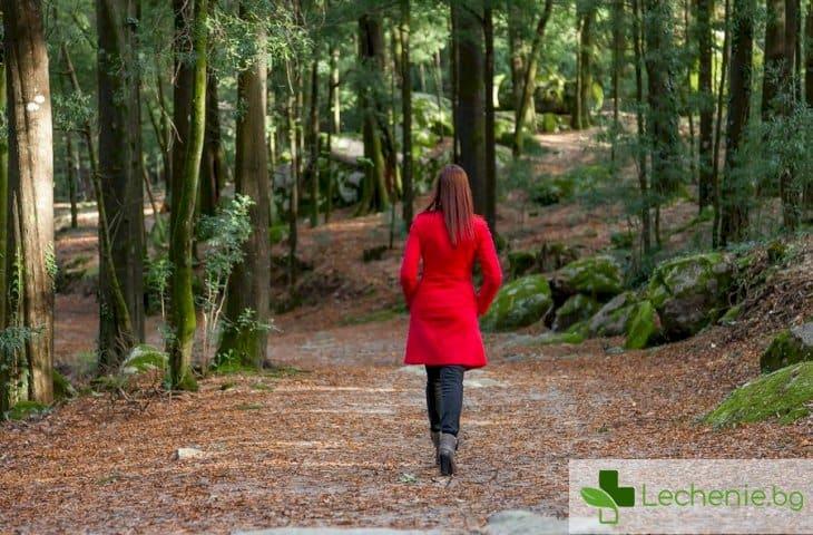 Как интроверт може да постигне щастие - топ 7 най-важни условия