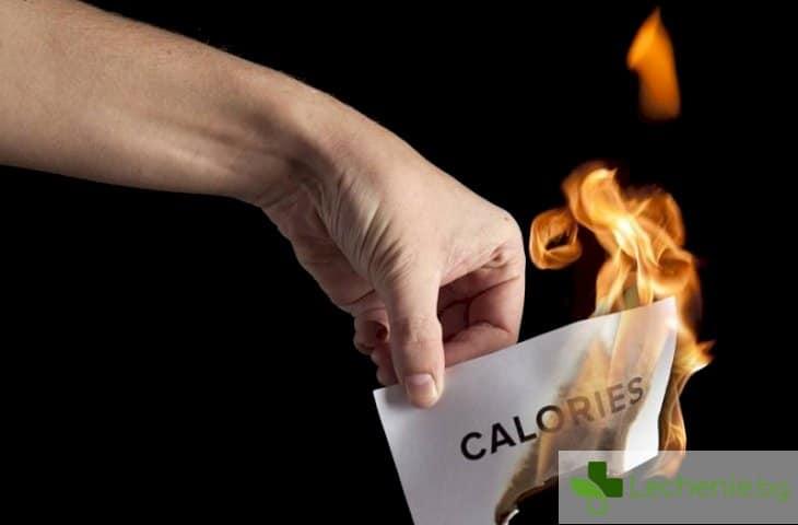 Как да изгаряме калории всеки ден?