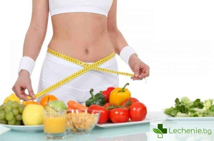 Полезно ли е да броим калориите в храната?