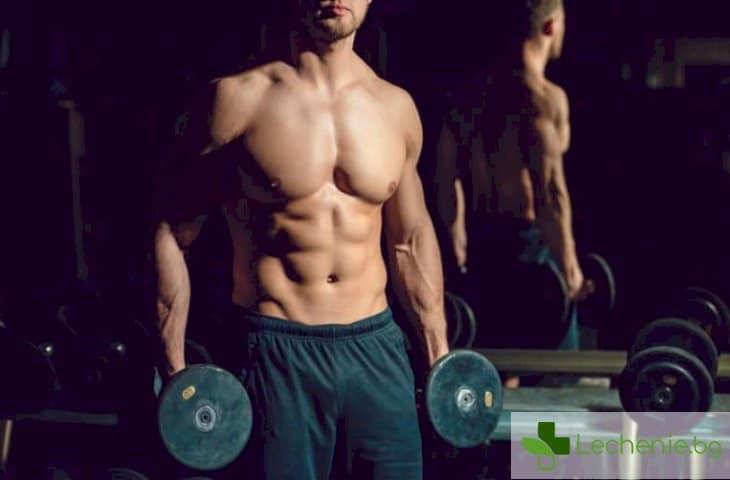 Хранителните добавки, с които ефективно можем да покачим мускулната си маса