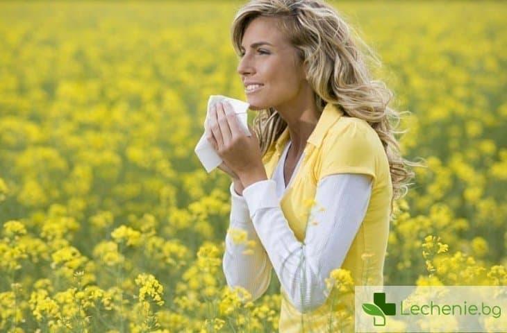 Кръстосана алергия - какво е забранено при полиноза