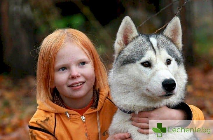 Как кучетата откриват рак