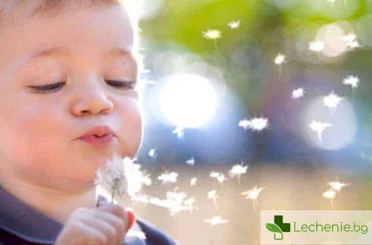 Излишната чистота у дома и рискът от алергични заболявания
