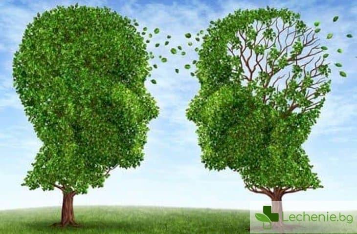 Опасните последствия на Алцхаймер гена са видими още в детска възраст