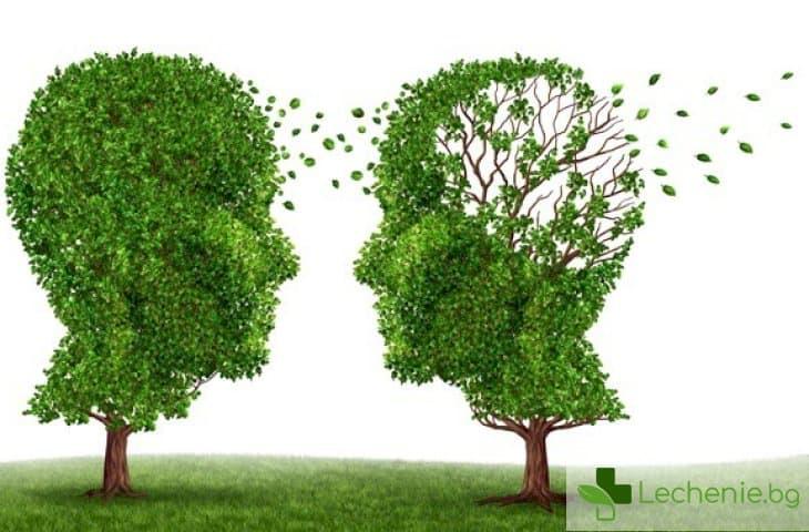 Болестта на Алцхаймер - един въпрос за 35 милиона