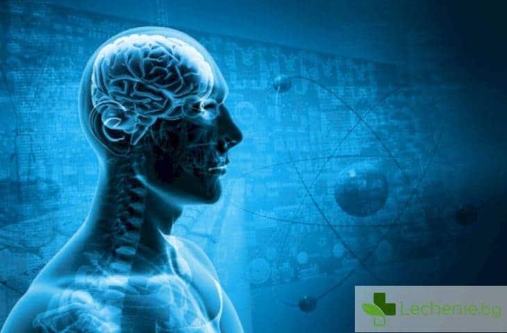Затъпяваме от антибиотиците и паметта отслабва