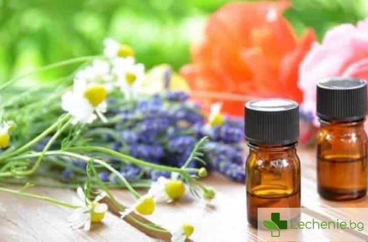 Природни антисептици - топ 7 антимикробни средства