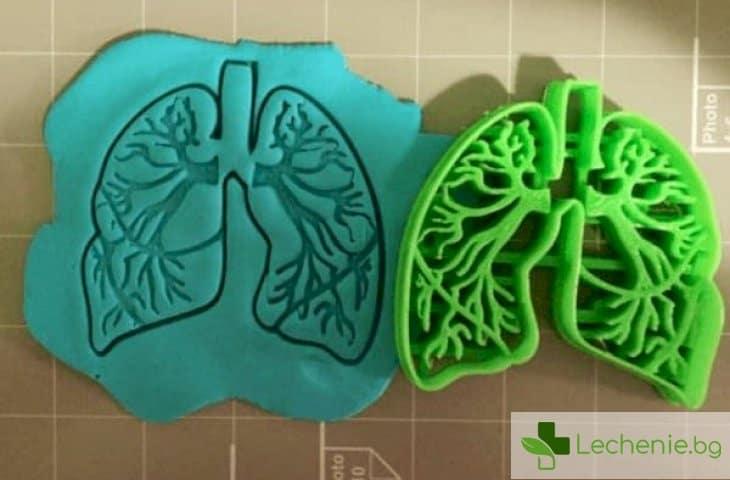 Топ 3 признака, че белите дробове не са в ред