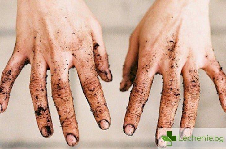Кои са заболяванията с общото наименование - болести на мръсните ръце