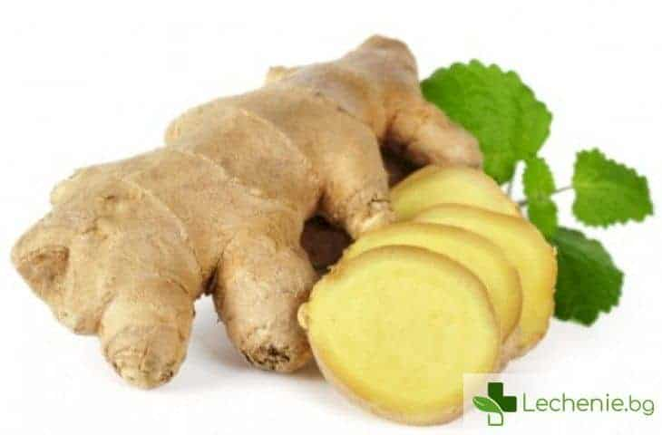 Топ 11 на храните, които ще ви избавят от болки в корема