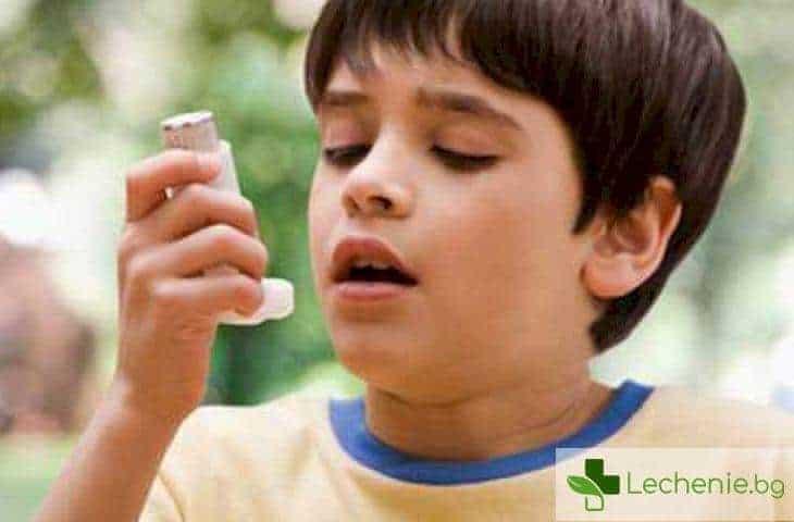 Как животинската вълна предпазва децата от бронхиална астма