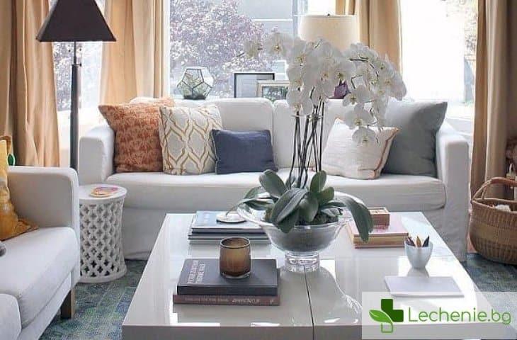 10 навика на жените, в чиито домове е винаги чисто и подредено