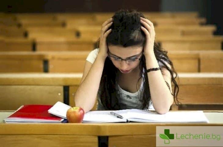 Как времето, прекарано в училище, спира интелектуалното развитие на децата
