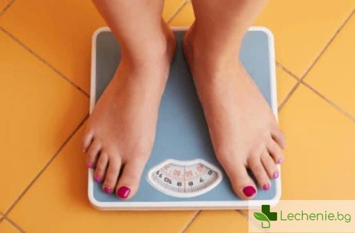 8 съвета, които ще ви помогнат да отслабнете без никакви диети и спорт