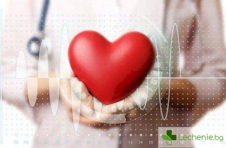 Дилатационна кардиомиопатия - ролята на коронарните артерии