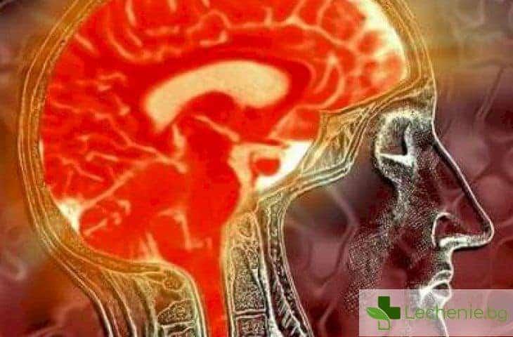 Грипен енцефалит - защо децата са най-застрашени