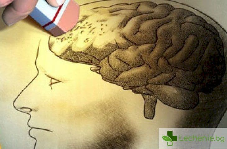 Захарта в плодовете разрушава стотици гени в мозъка с непредвидими последици за тялото