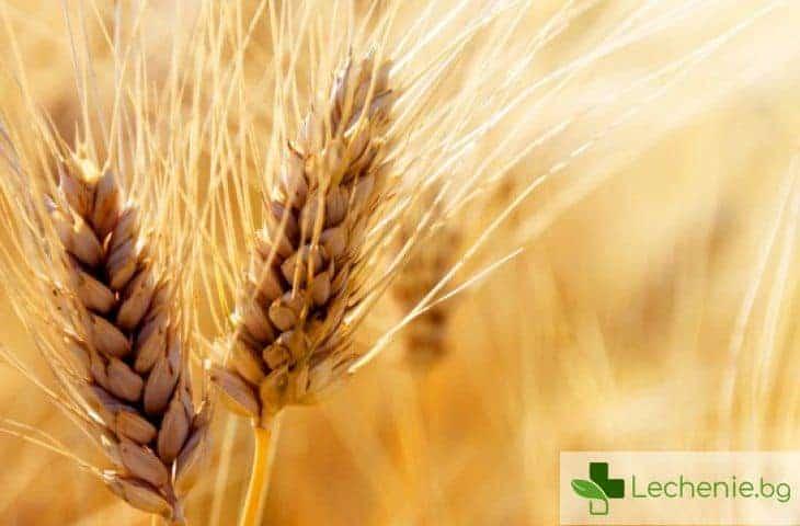 Глутен - можем ли да се доверяваме на етикетите на хранителните продукти