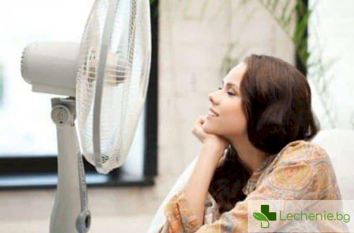 7 правила за преживяване на анормални горещини