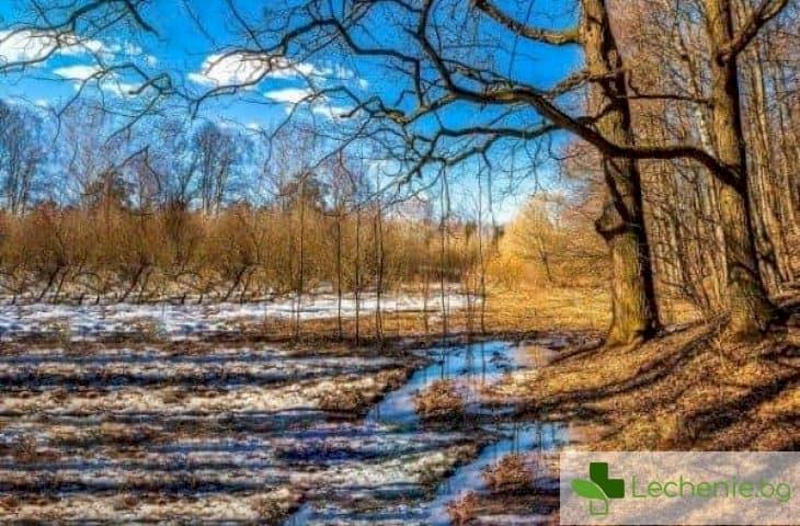 Пролет без изненади - как да се предпазим от настинки при смяна на сезоните