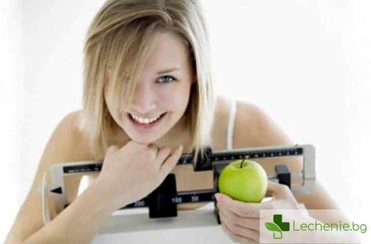 Полезни ли са междинните хранения по време на диета