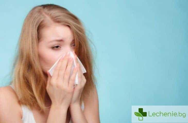 Лятна хрема - настинка или алергия