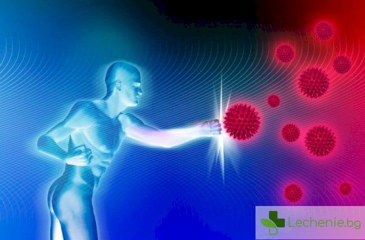 Шокираща нова функция на имунната система - нарежда как да се държим с хората